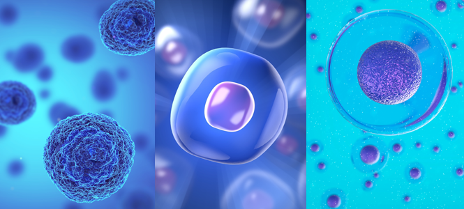 terapias-celulas-madre-secuvita