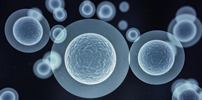 Células madre y terapia génica para curar el asma y las alergias