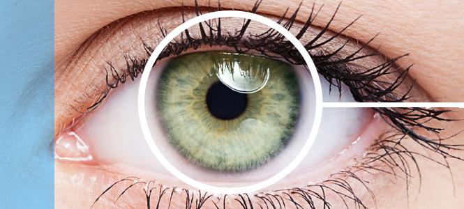 Terapias con células madre para tratar la retinosis pigmentaria