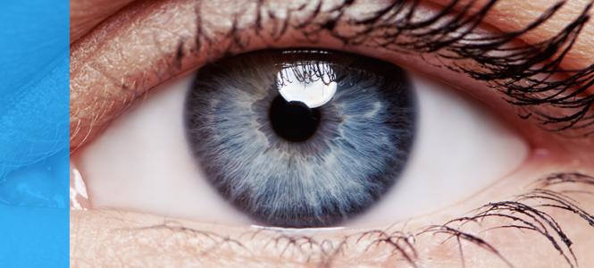 Tratamientos con células madre como alternativa al trasplante corneal